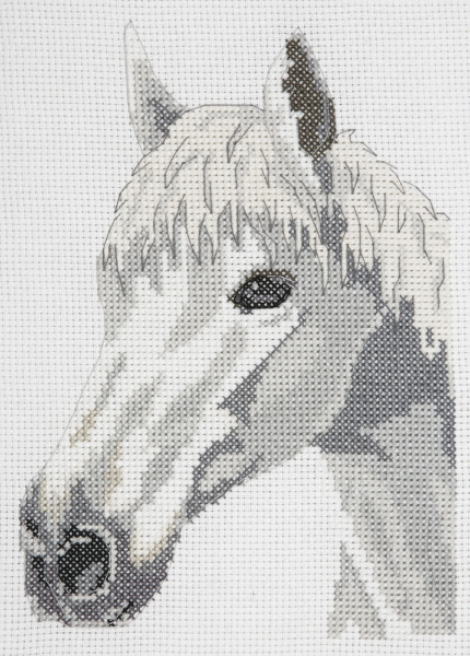 anchor-cross-stitch-kit-white-beauty-horse